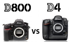 Nikon D800 vs D4 – Which One Is Right For You?